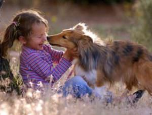 Pets help children cope with divorce