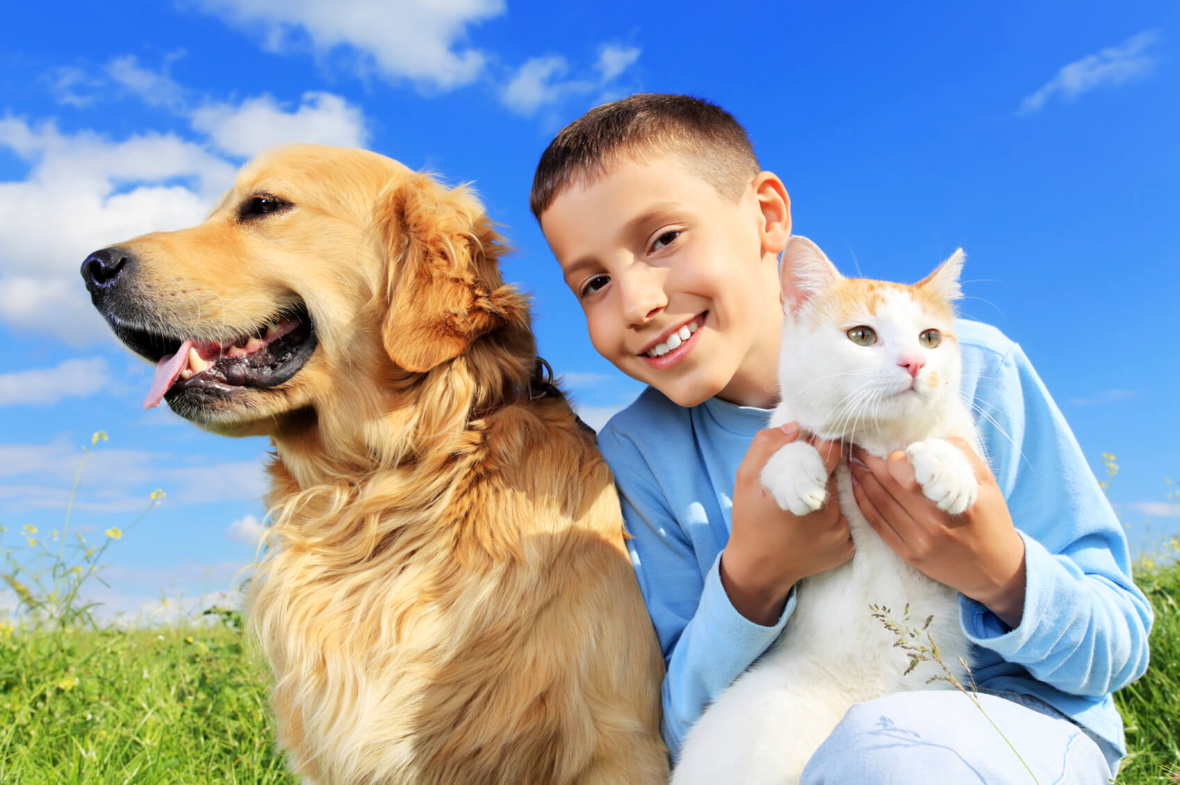6 Reasons Pets Help Families Better Cope With Divorce!